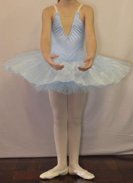 Tutu on leotard made to order