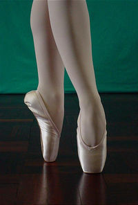 Sansha pointe shoe